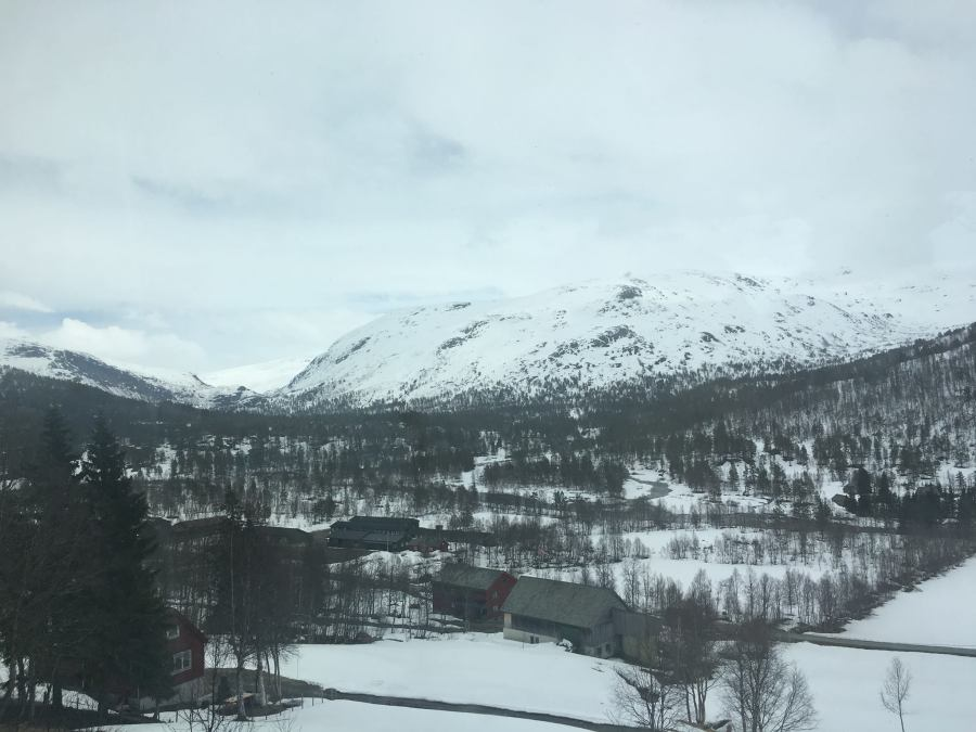 Norway: Train Ride to Oslo